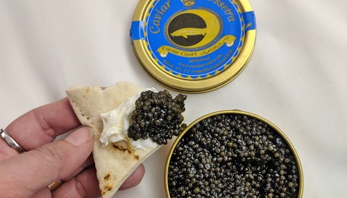 Saudi Caviar is being Produced in Dammam