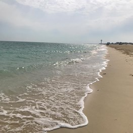 Ras Tanura Beach - March 2019